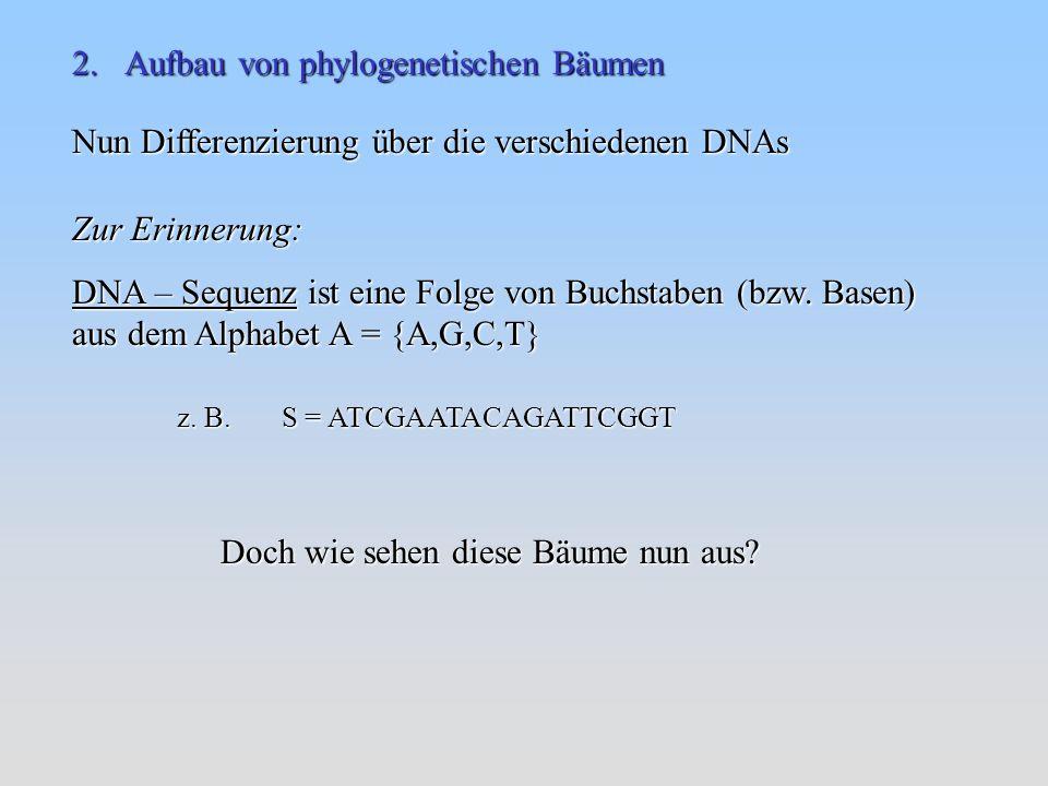 2. Aufbau von phylogenetischen Bäumen