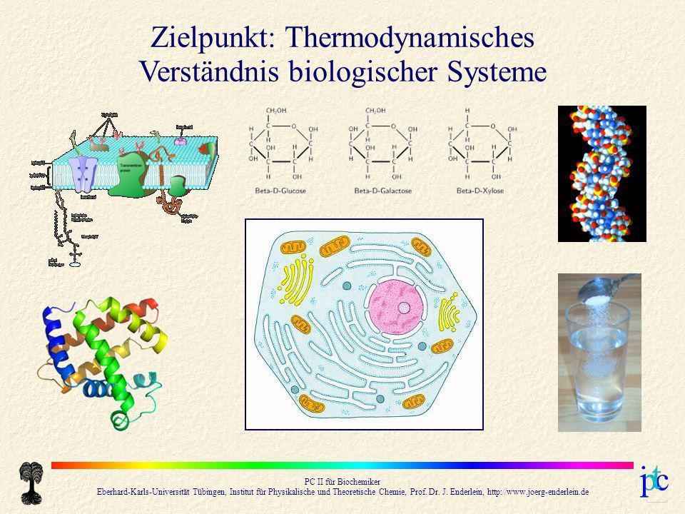 Zielpunkt: Thermodynamisches Verständnis biologischer Systeme