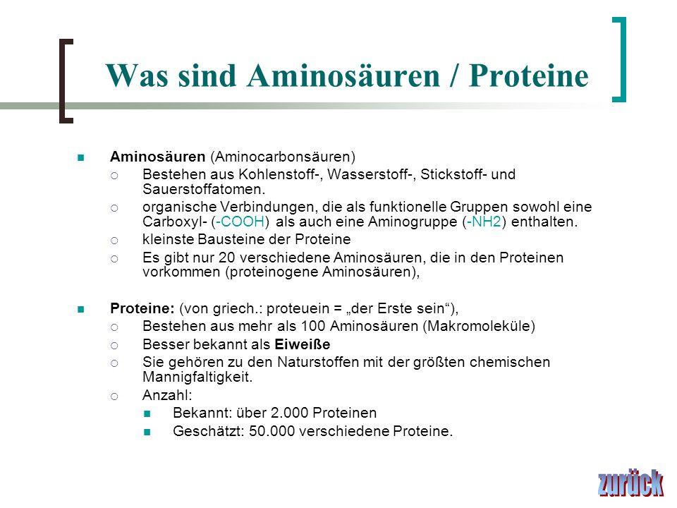 Was sind Aminosäuren / Proteine