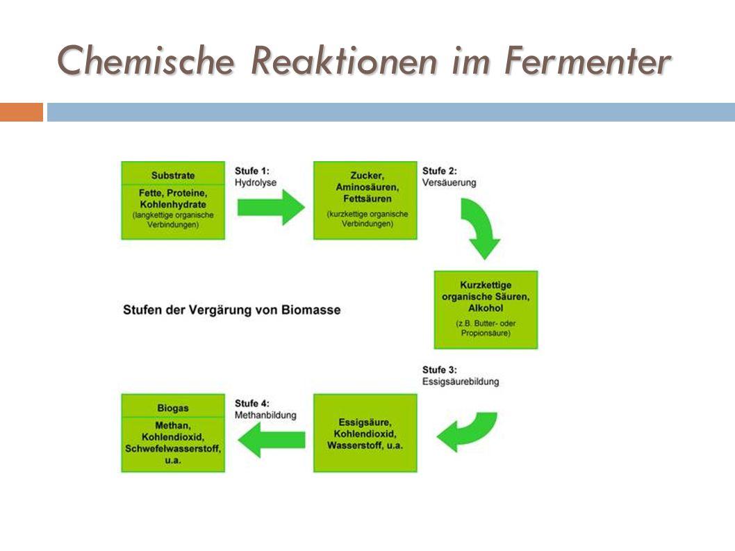Chemische Reaktionen im Fermenter