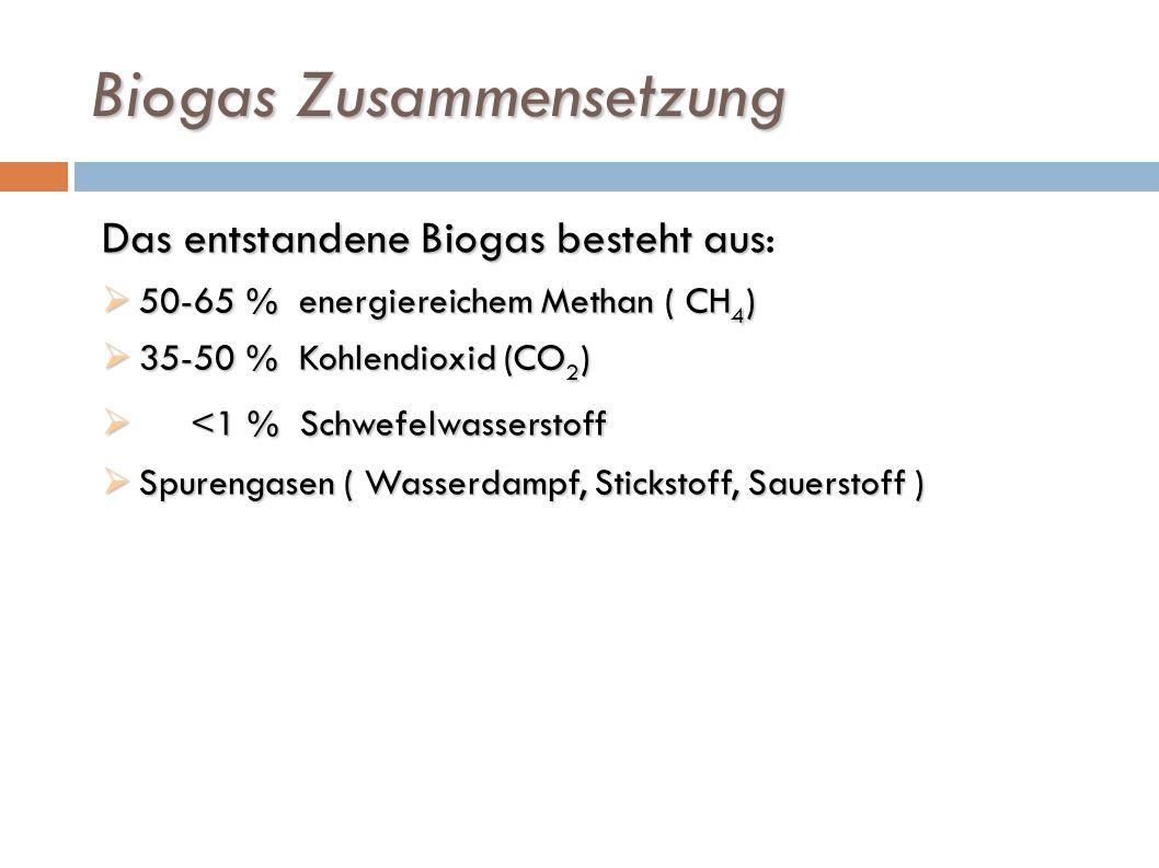 Biogas Zusammensetzung