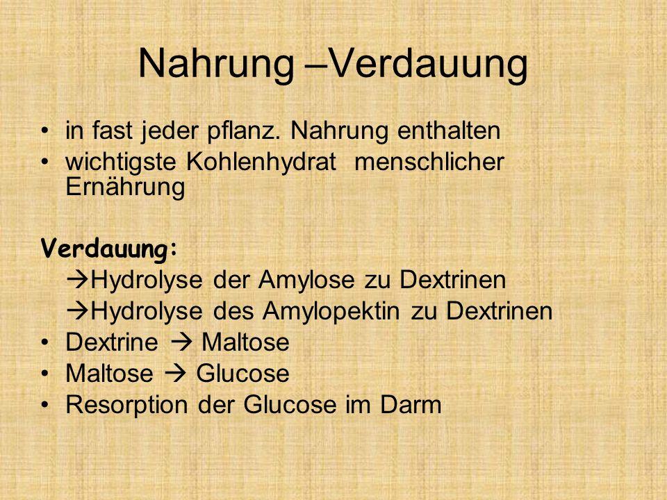 Nahrung –Verdauung in fast jeder pflanz. Nahrung enthalten