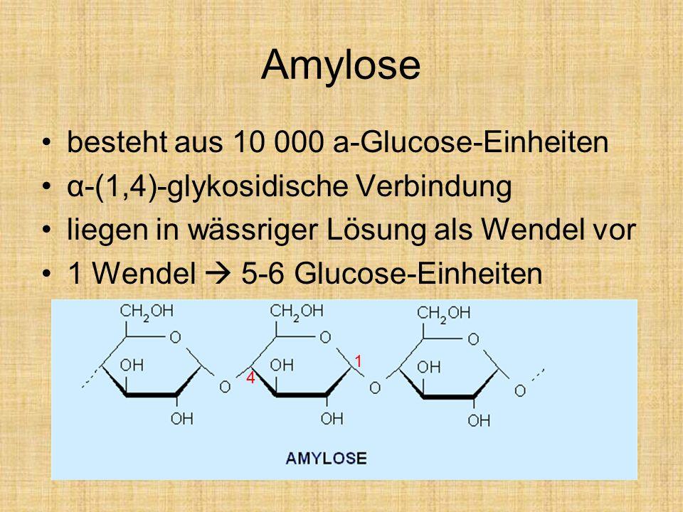 Amylose besteht aus 10 000 a-Glucose-Einheiten
