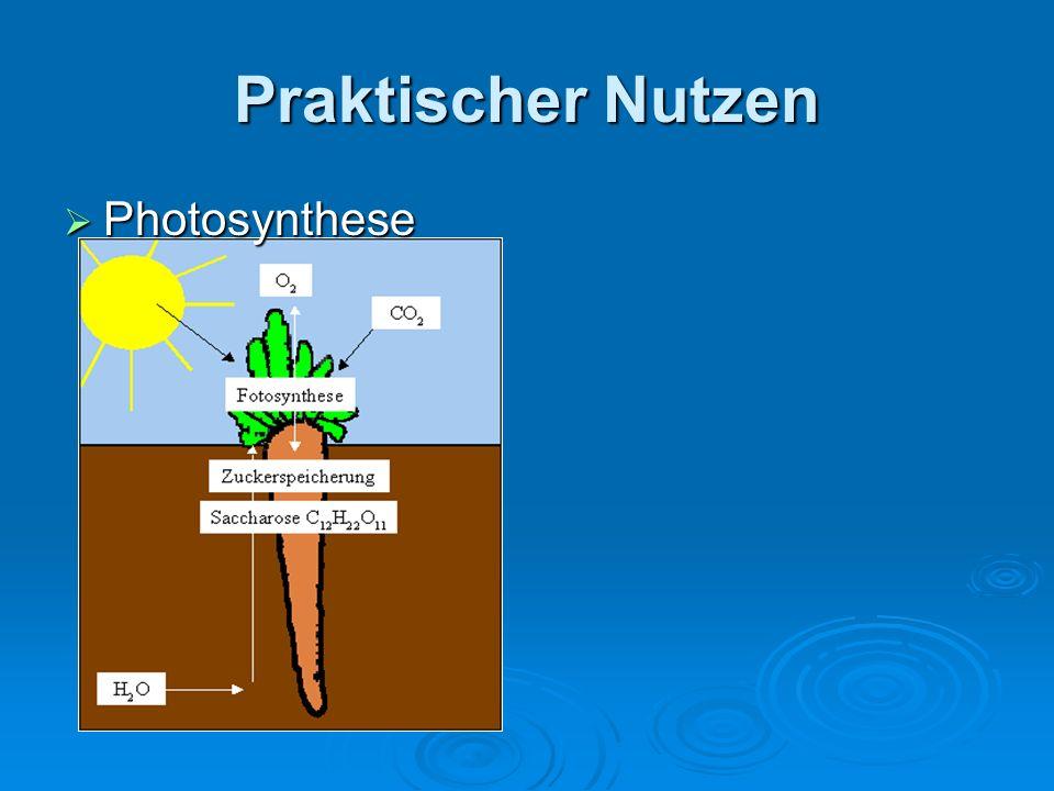 Praktischer Nutzen Photosynthese