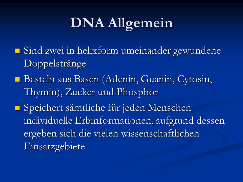 DNA Allgemein Sind zwei in helixform umeinander gewundene Doppelstränge. Besteht aus Basen (Adenin, Guanin, Cytosin, Thymin), Zucker und Phosphor.