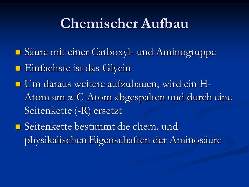 Chemischer Aufbau Säure mit einer Carboxyl- und Aminogruppe
