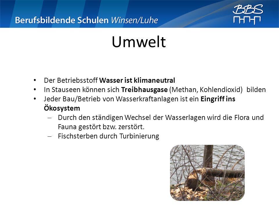 Umwelt Der Betriebsstoff Wasser ist klimaneutral