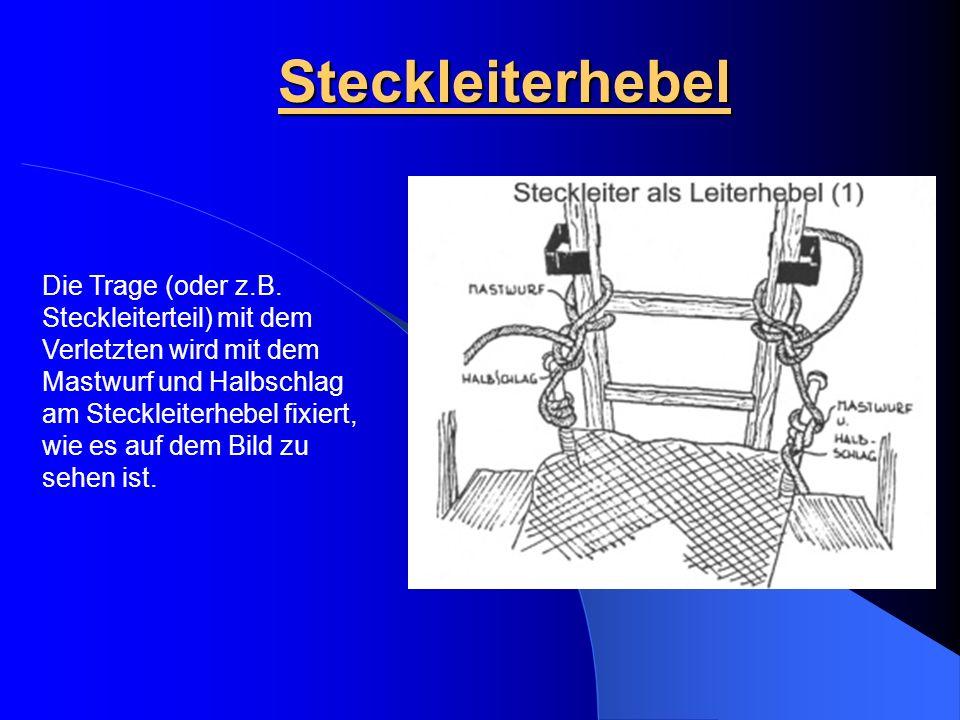 Steckleiterhebel