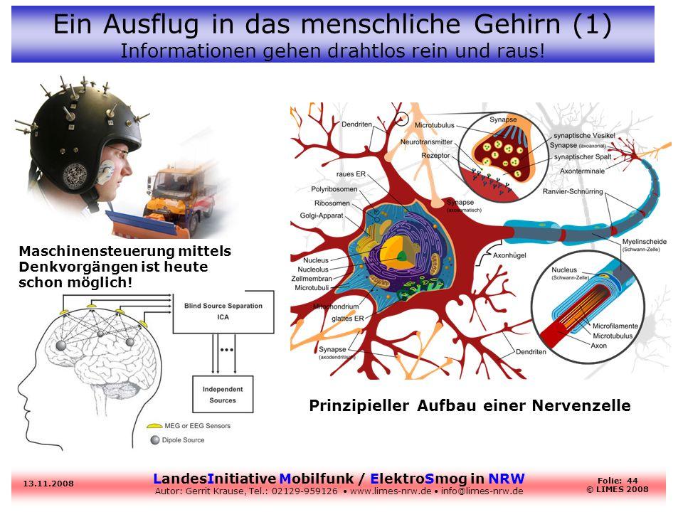 Ein Ausflug in das menschliche Gehirn (1) Informationen gehen drahtlos rein und raus!
