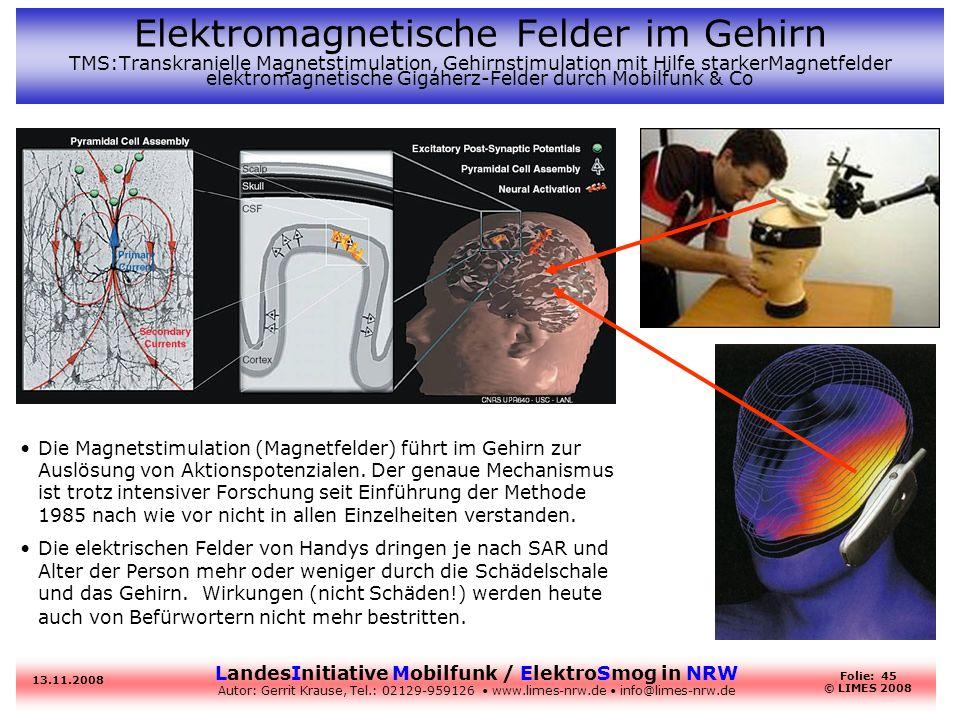 Elektromagnetische Felder im Gehirn TMS:Transkranielle Magnetstimulation, Gehirnstimulation mit Hilfe starkerMagnetfelder elektromagnetische Gigaherz-Felder durch Mobilfunk & Co