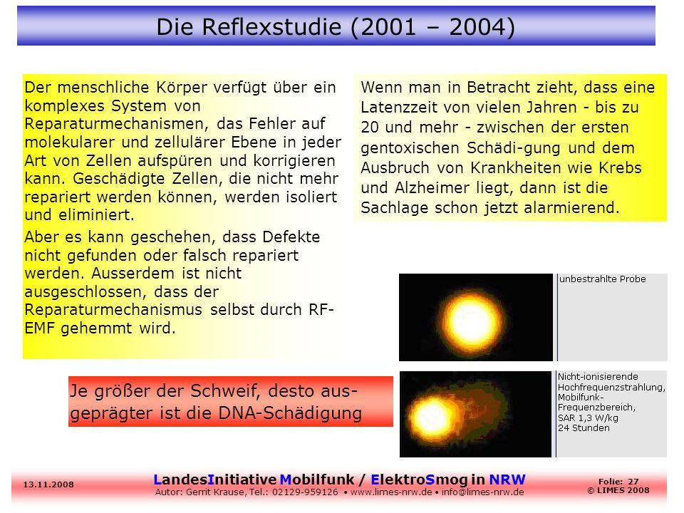 Die Reflexstudie (2001 – 2004)