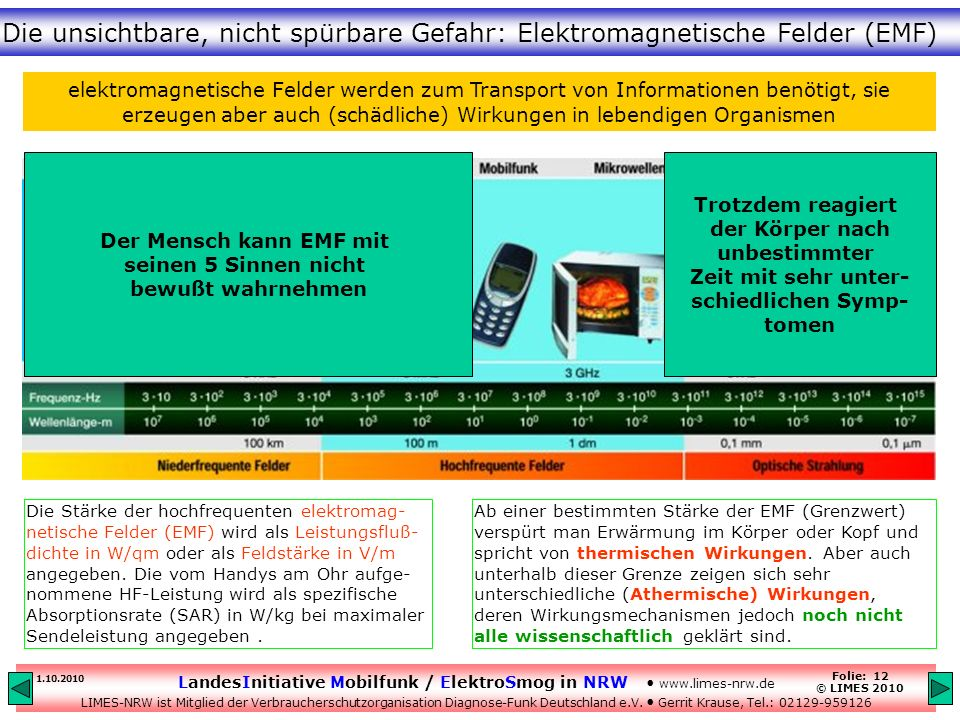 elektromagnetisches feld mensch