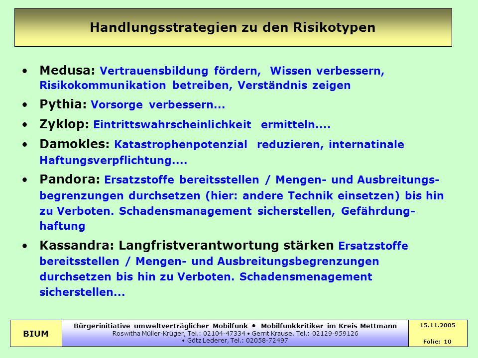Handlungsstrategien zu den Risikotypen