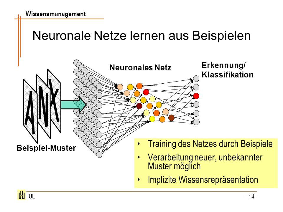 Neuronale Netze lernen aus Beispielen