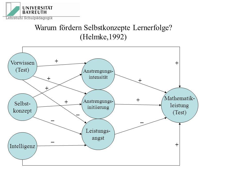 Warum fördern Selbstkonzepte Lernerfolge (Helmke,1992)