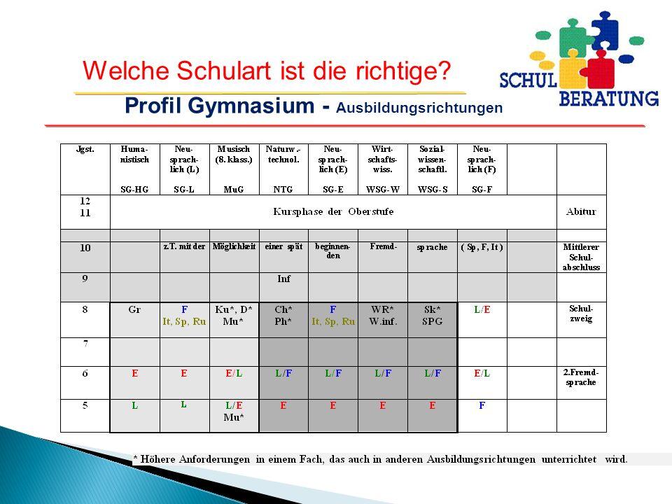 Profil Gymnasium - Ausbildungsrichtungen