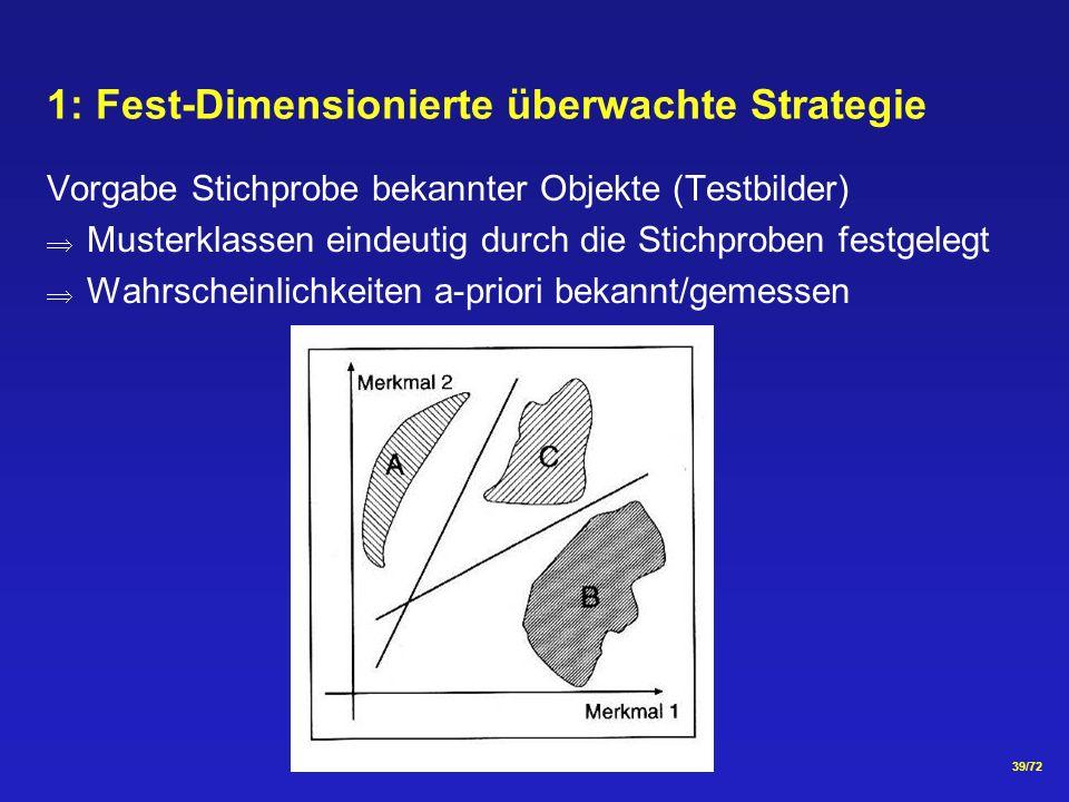 1: Fest-Dimensionierte überwachte Strategie