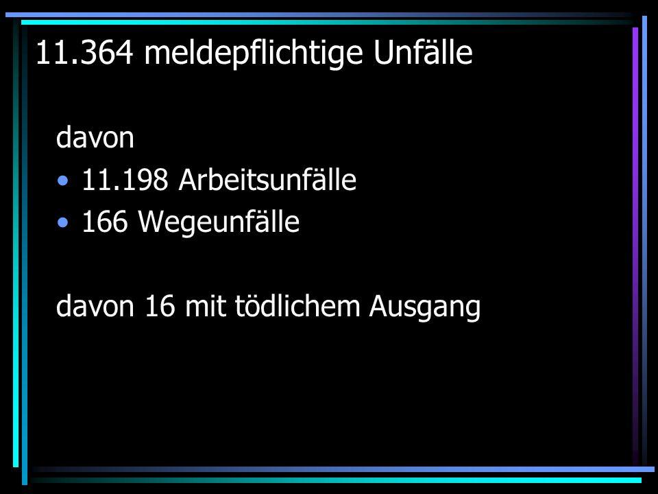 11.364 meldepflichtige Unfälle