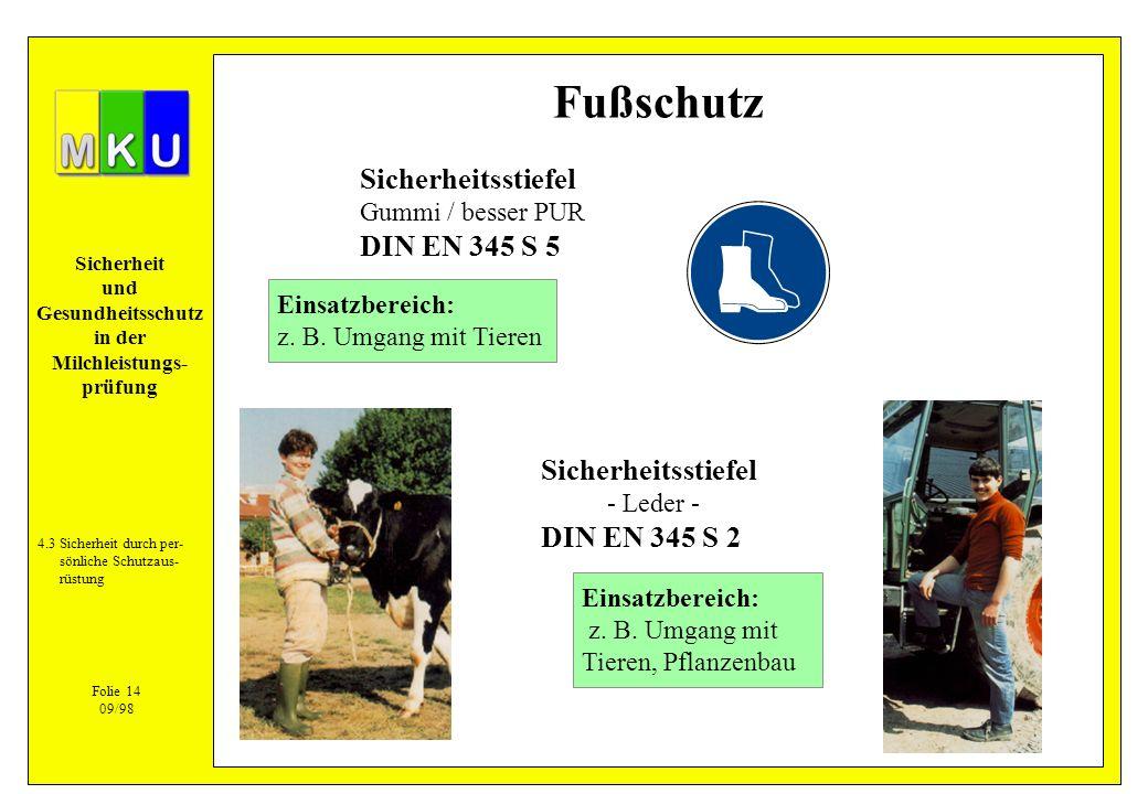 Fußschutz Sicherheitsstiefel DIN EN 345 S 5 Sicherheitsstiefel