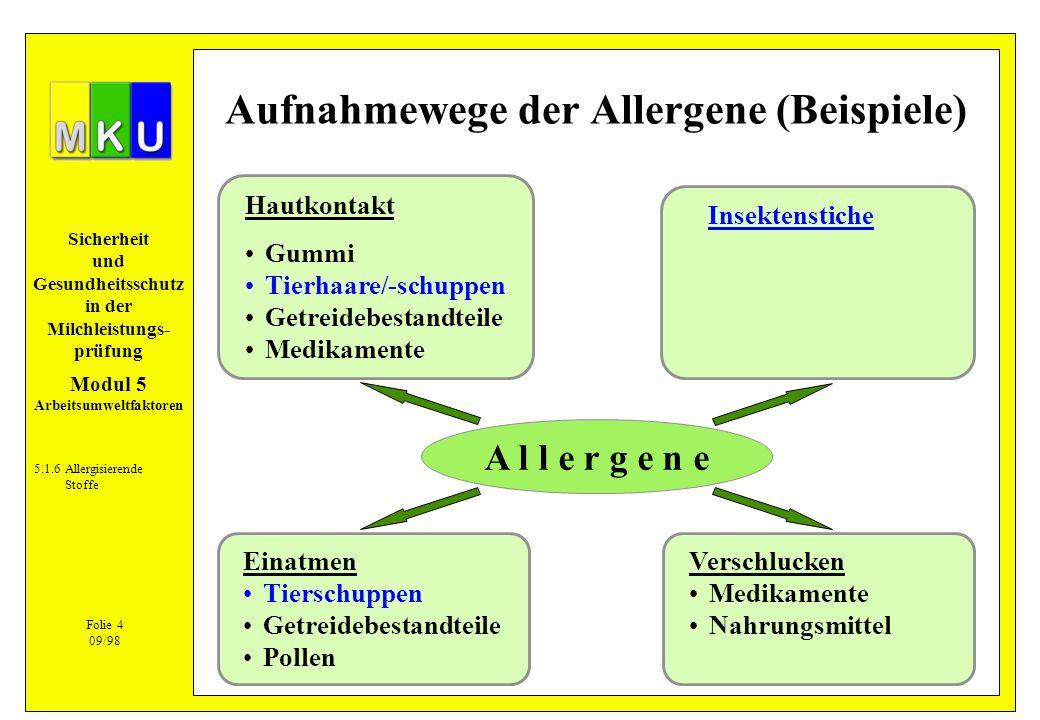 Aufnahmewege der Allergene (Beispiele)