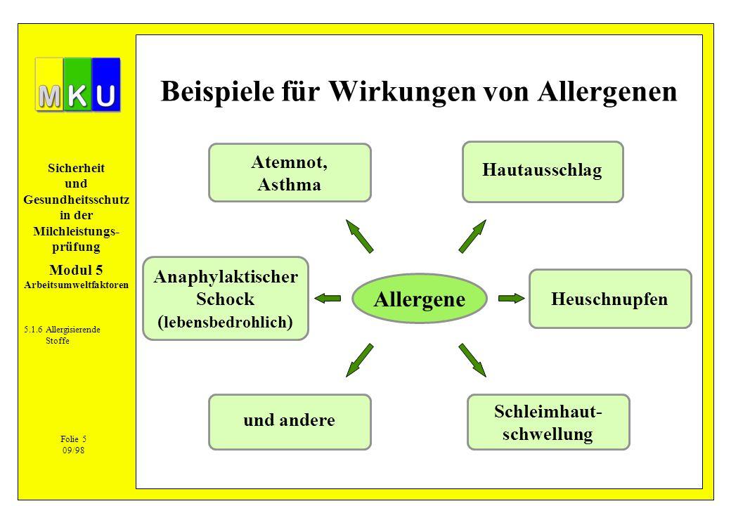Beispiele für Wirkungen von Allergenen