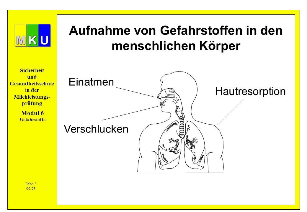 Aufnahme von Gefahrstoffen in den menschlichen Körper