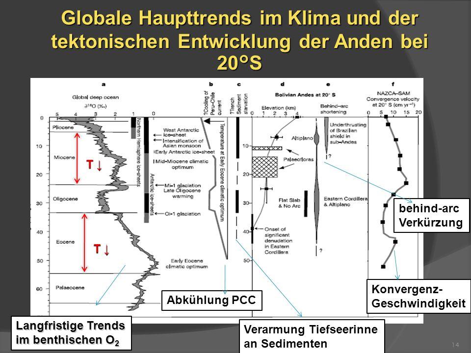 Globale Haupttrends im Klima und der tektonischen Entwicklung der Anden bei 20°S