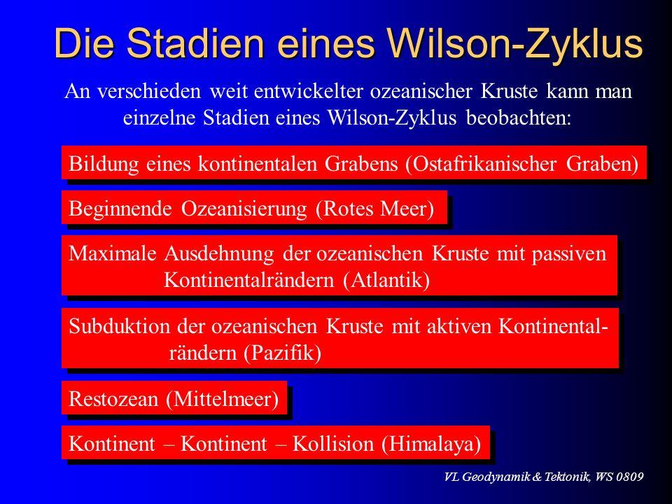 Die Stadien eines Wilson-Zyklus