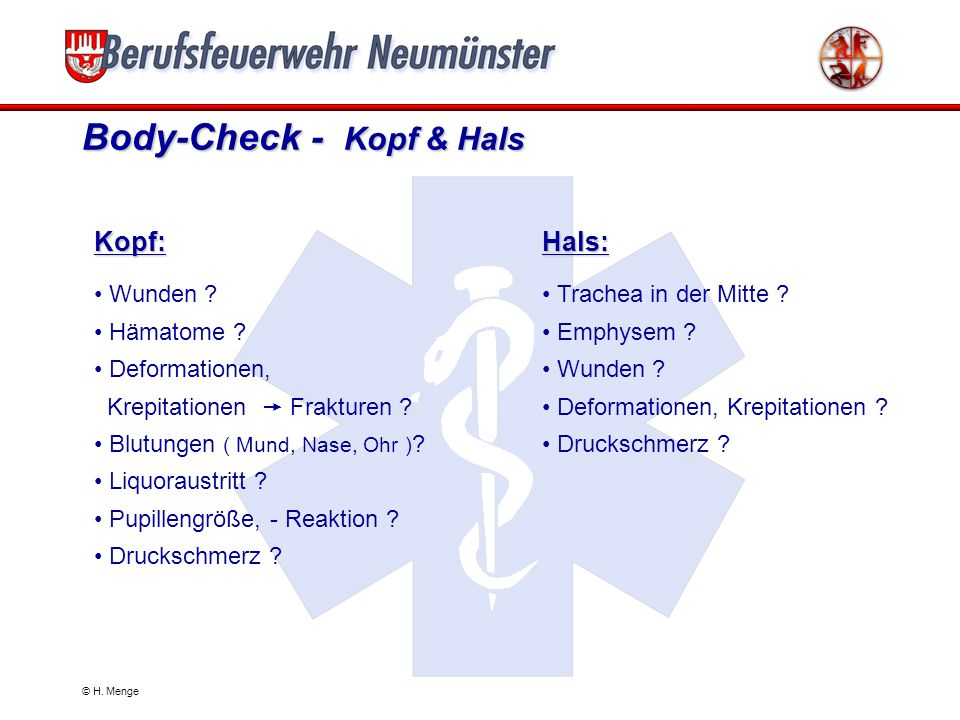 Body-Check - Kopf & Hals