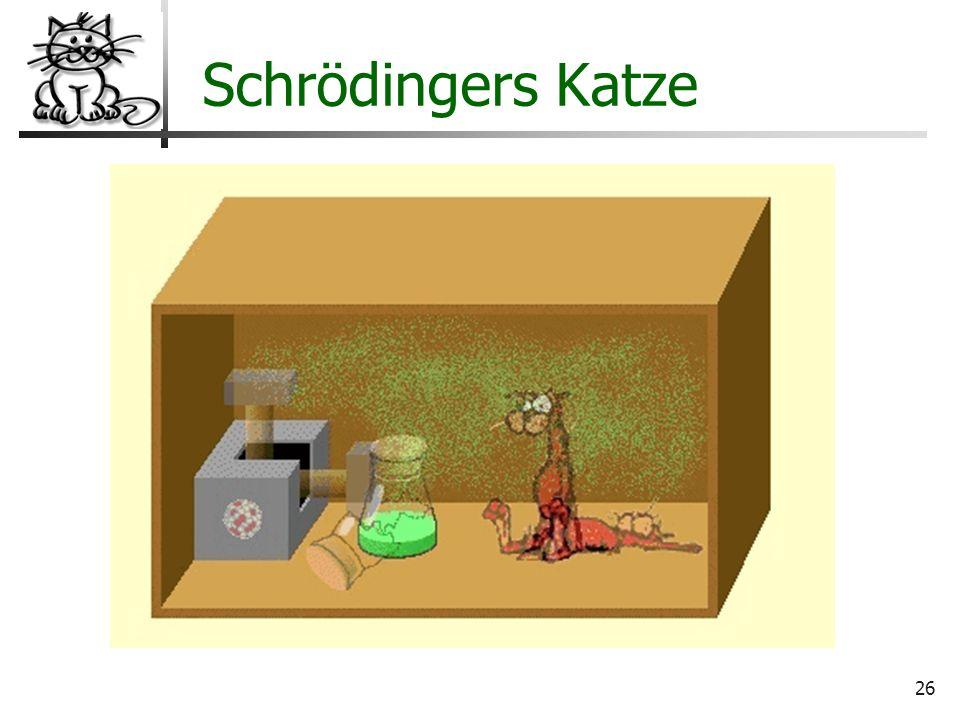 Schrödingers Katze Wo liegt der Hund begraben