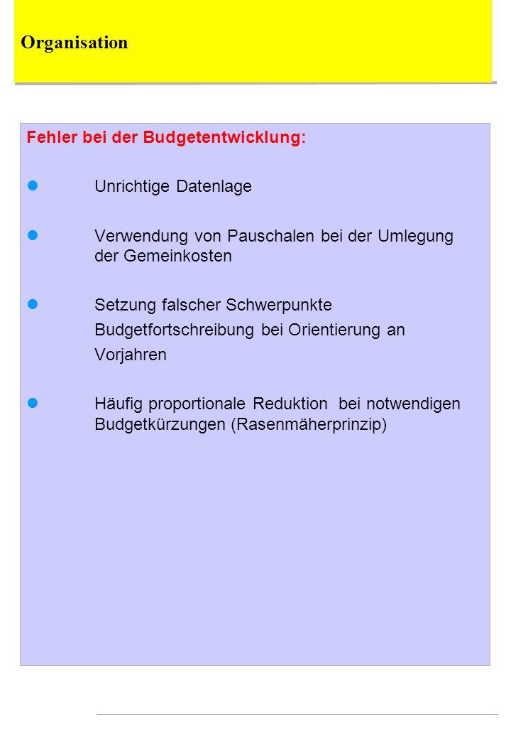 Organisation Fehler bei der Budgetentwicklung: Unrichtige Datenlage
