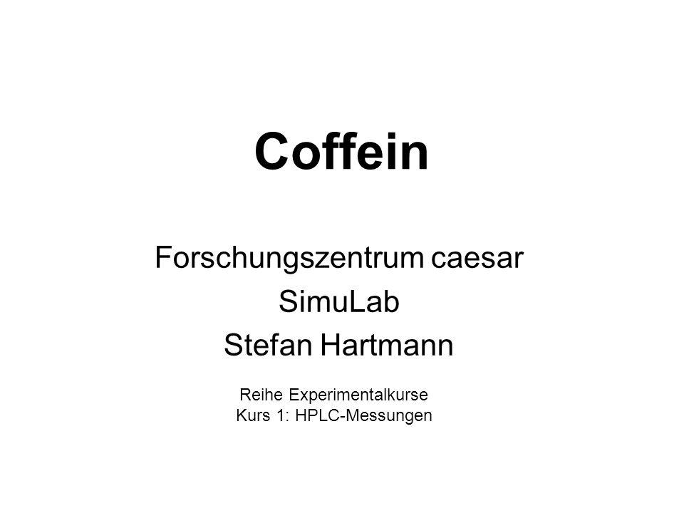 Forschungszentrum caesar SimuLab Stefan Hartmann