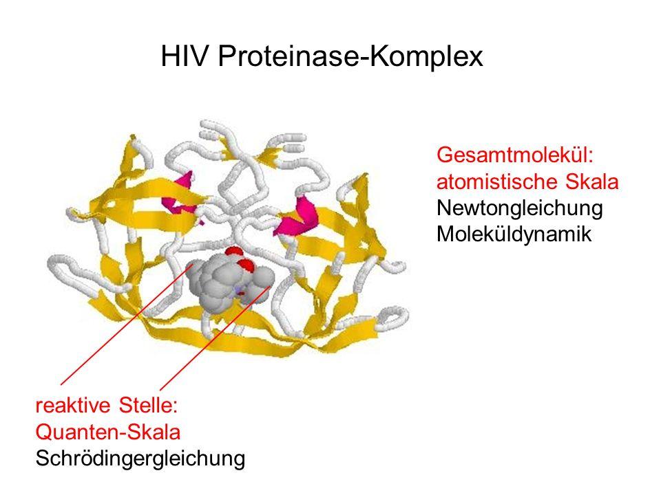 HIV Proteinase-Komplex