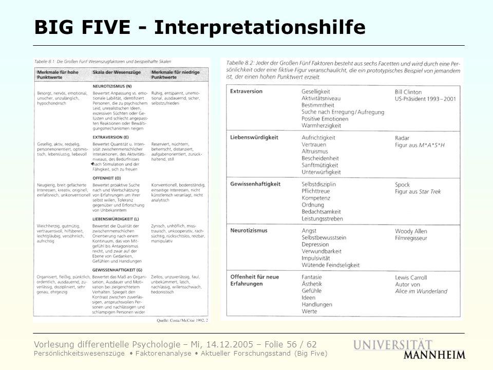 BIG FIVE - Interpretationshilfe