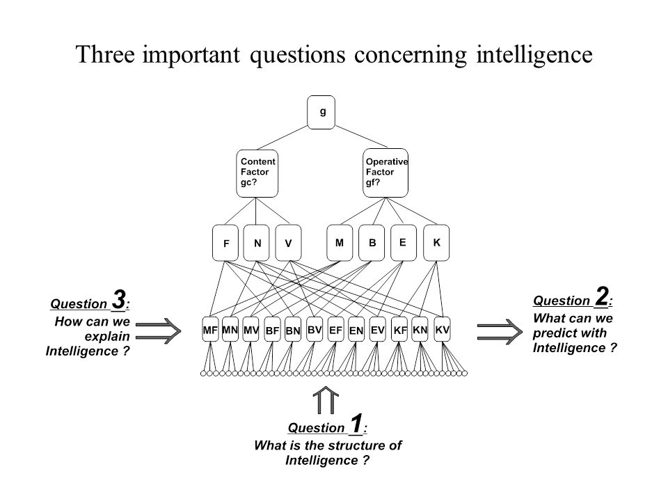 Three important questions concerning intelligence