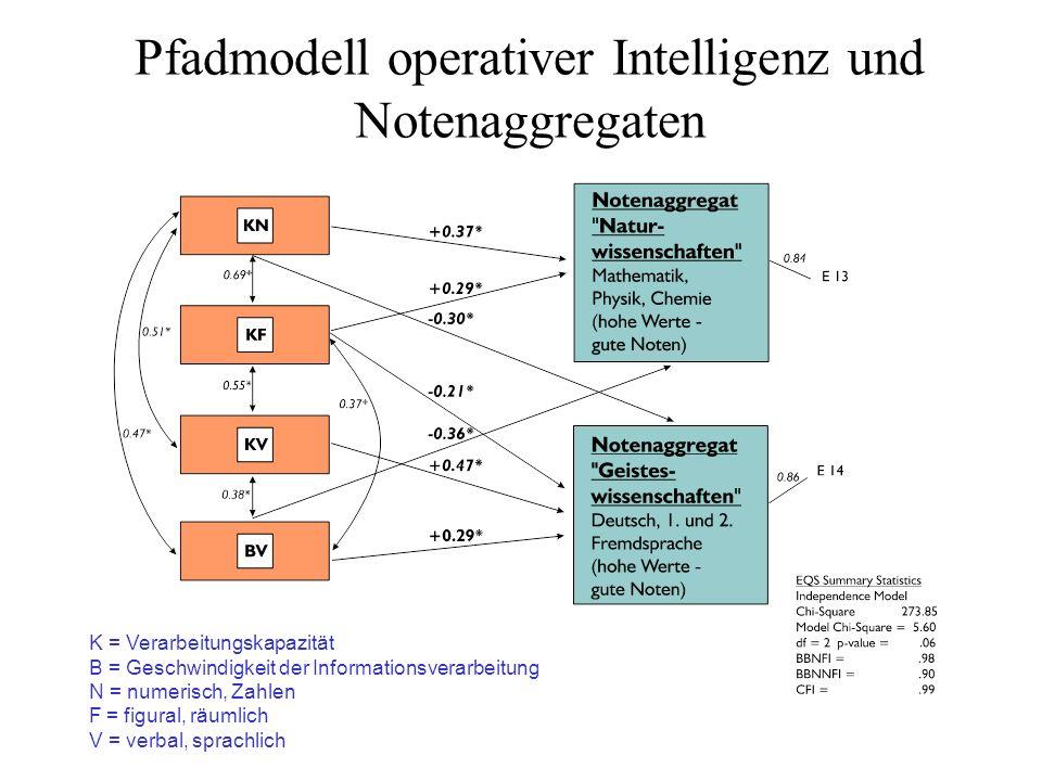 Pfadmodell operativer Intelligenz und Notenaggregaten