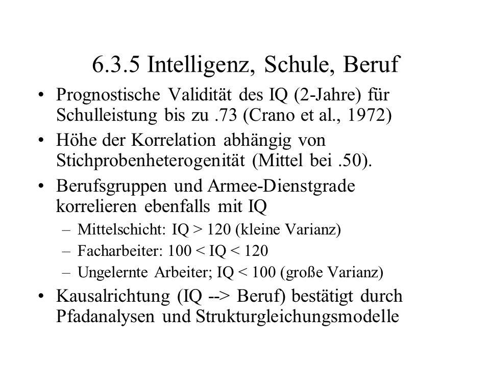 6.3.5 Intelligenz, Schule, Beruf