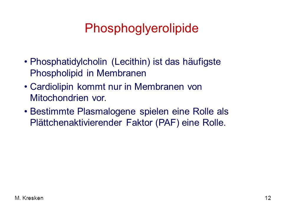 Phosphoglyerolipide Phosphatidylcholin (Lecithin) ist das häufigste Phospholipid in Membranen.