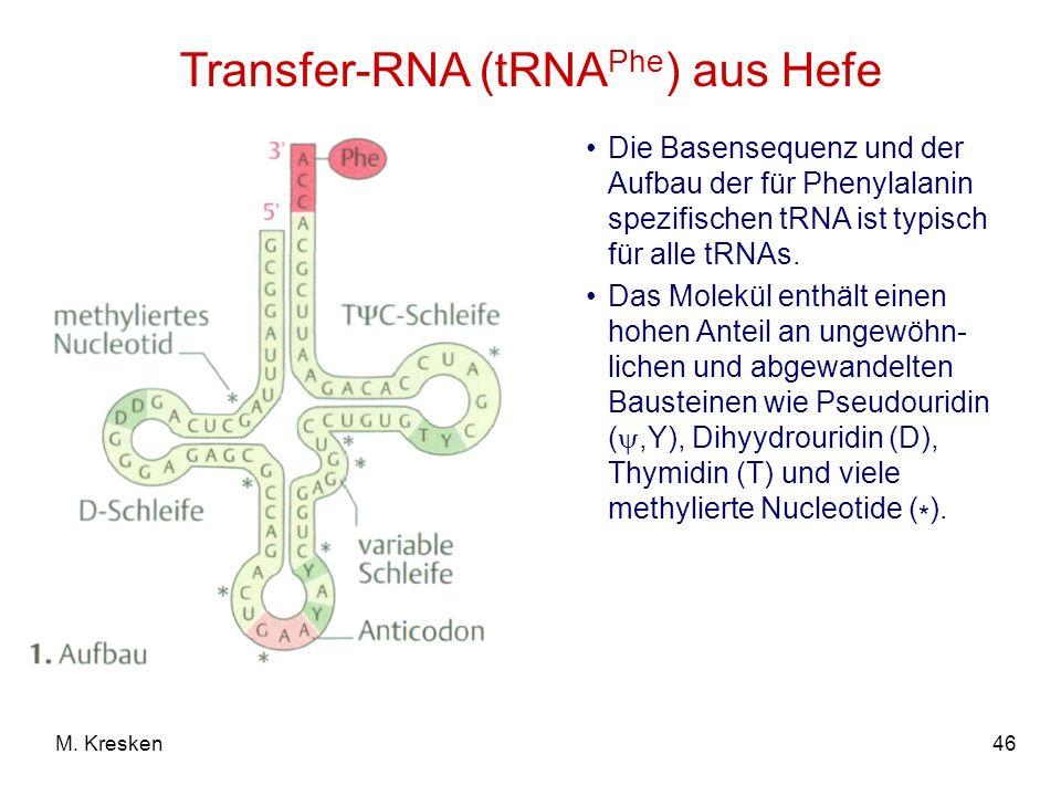 Transfer-RNA (tRNAPhe) aus Hefe