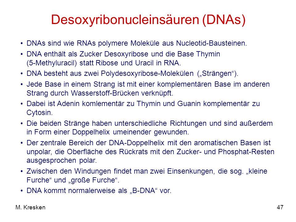 Desoxyribonucleinsäuren (DNAs)