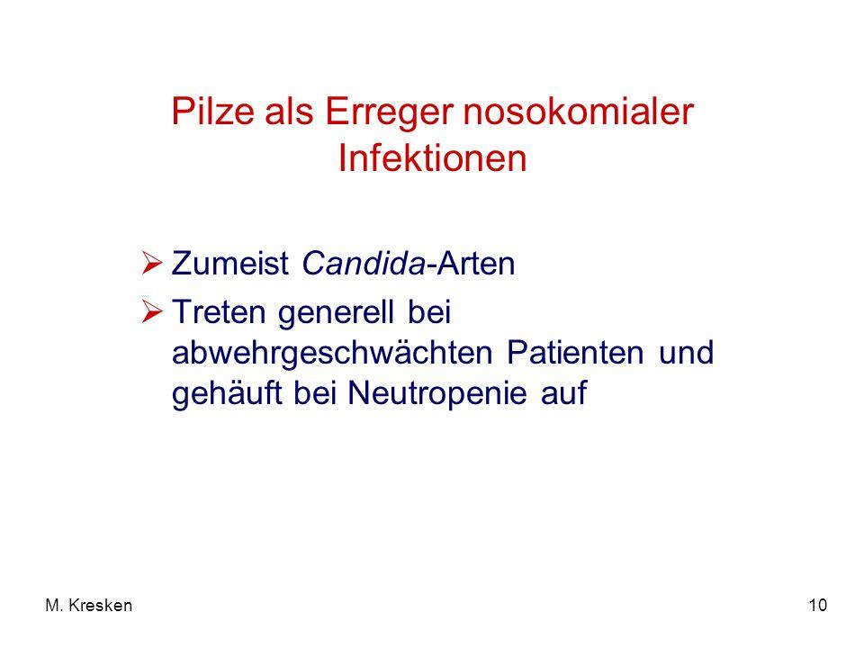 Pilze als Erreger nosokomialer Infektionen