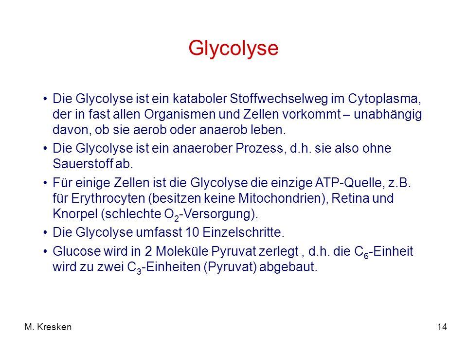 Glycolyse