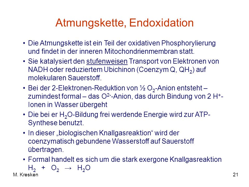 Atmungskette, Endoxidation