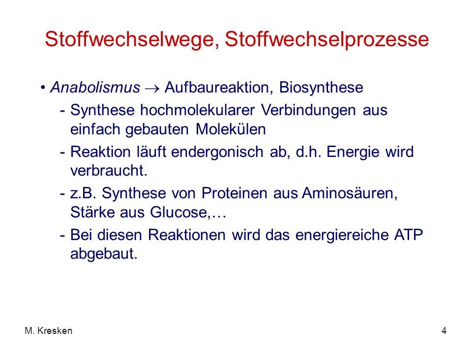 Stoffwechselwege, Stoffwechselprozesse