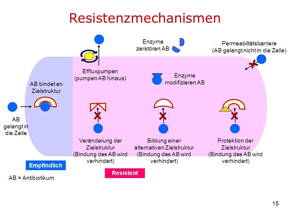 Resistenzmechanismen