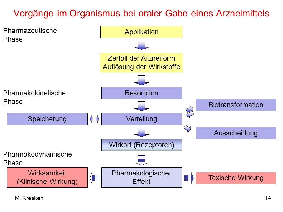 Vorgänge im Organismus bei oraler Gabe eines Arzneimittels