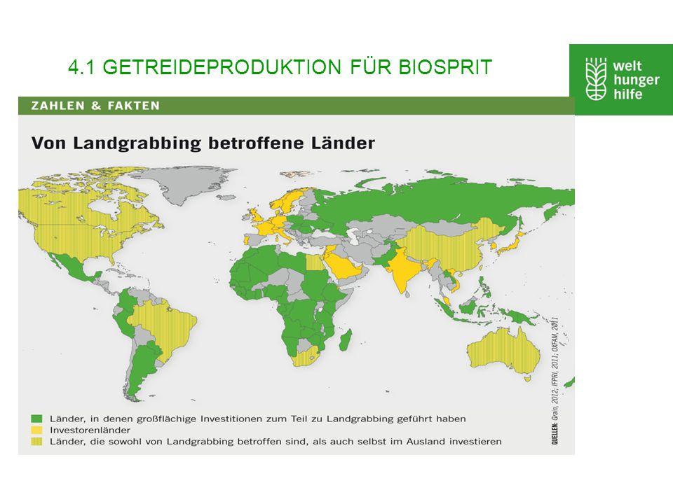 4.1 GETREIDEPRODUKTION FÜR BIOSPRIT