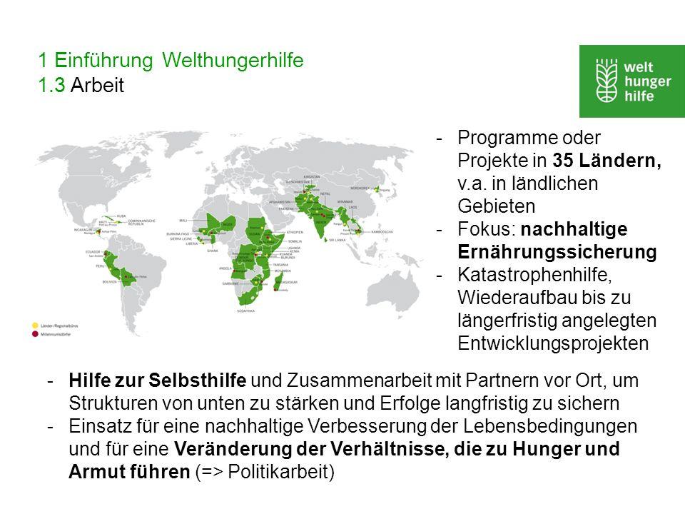 1 Einführung Welthungerhilfe 1.3 Arbeit