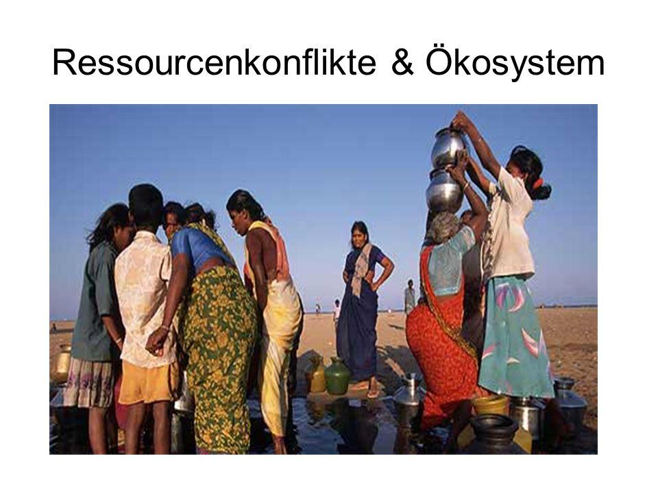 Ressourcenkonflikte & Ökosystem