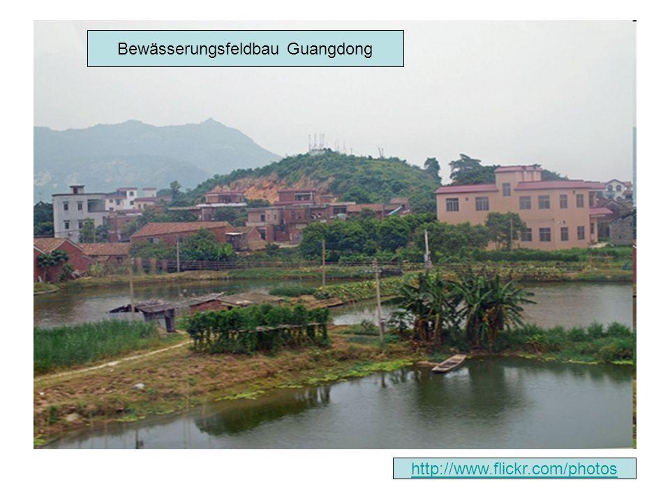 Bewässerungsfeldbau Guangdong